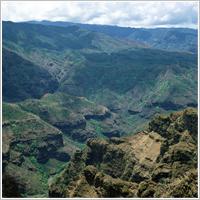 癒しのパワーに溢れたハワイに大感動!